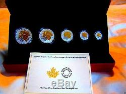 2014 Canada Gilded Maple Leaf Fractional coin set silver 9999 proof box COA