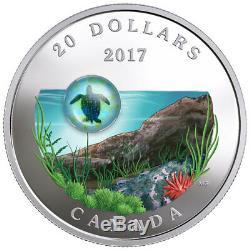 2017 Canada Under Sea Sea Turtle 1 oz Silver Colorized Proof $20 OGP SKU49122