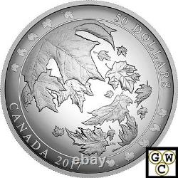 2017'Maple Leaves in Motion' Proof $50 Silver Coin 5oz. 9999 Fine (18091) (NT)