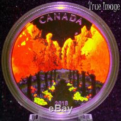 2018 Maple Tree Tunnel $20 Glow-in-the-Dark Pure Silver Proof Coin Canada
