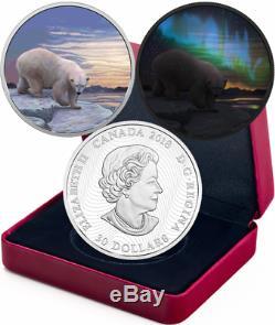 2018 Polar Bear Northern Lights Arctic Animals $30 2OZ Silver Proof Coin Canada