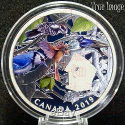 2019 Birds in the Backyard $30 2 OZ Pure Silver Proof Coloured Coin Canada