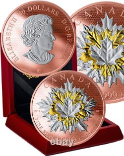 2019 Maple Leaves in Motion $50 5OZ Pure Silver Proof Coin Canada, Mintage 1000