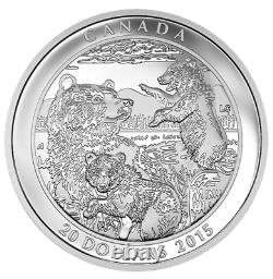 3 x 1 oz Proof Fine Silver Coin Grizzly Bear The catch Togetherness Family