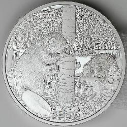 Canada 2013 $50 Beaver Family 5 oz. 99.99% Pure Silver Proof Coin