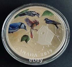 Canada 2019 Birds in the Backyard 2 Oz. $30 Pure Silver Proof Coloured Coin