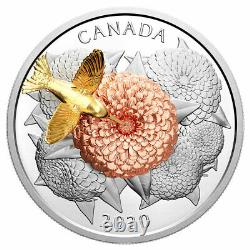 Canada 2020 $50 Moving Hummingbird and the Bloom 5OZ Pure Silver Proof Coin